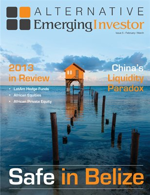 Alternative Emerging Investor:  Issue 5