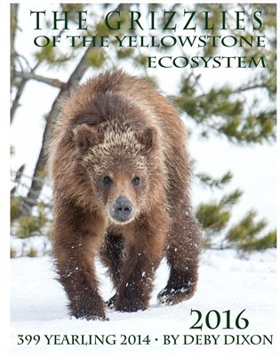 The Grizzlies of the Yellowstone Ecosystem Calendar 2016