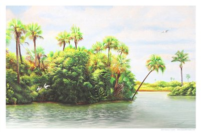 TROPICAL FLORIDA ART - COMING HOME TO THE PEACE RIVER 12A