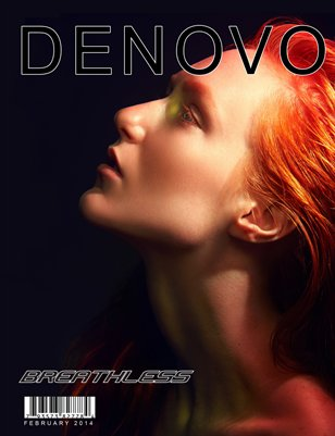 Denovo Issue 15 Feburary 2014