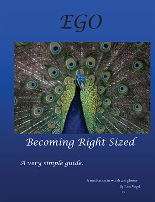 EGO - becoming right sized