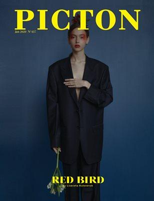 Picton Magazine February  2020 N437 Cover 2