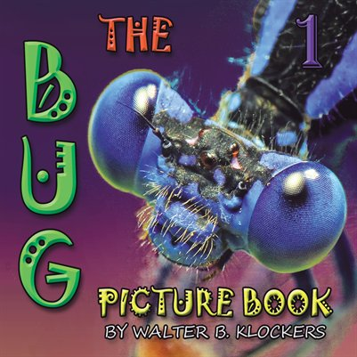 The Bug Picture Book 1