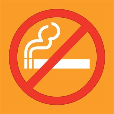 "No Smoking (Small 8x8"" Sign)"