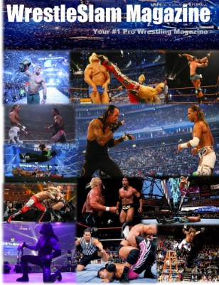 Issue #2: WrestleMania XXVII Special Edition