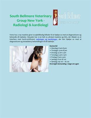 South Bellmore Veterinary Group New York - Radiologi & kardiologi