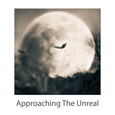 Approaching the Unreal - APA Curator's Voice 2014