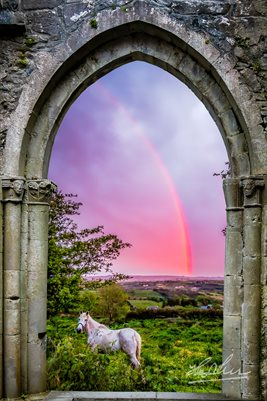 Medieval Arch with White Horse and Monochrome Rainbow (POSTER)