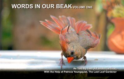 Words In Our Beak Volume One