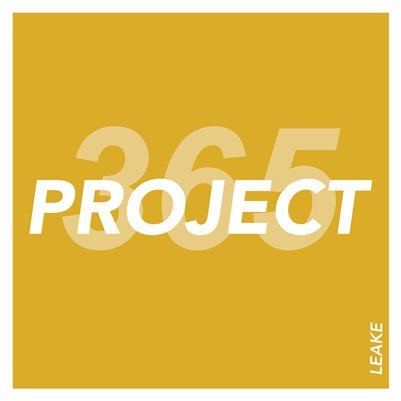 365 Project