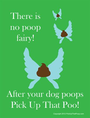 There is no poop fairy! Flyer