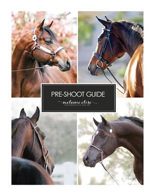 Pre-Shoot Guide | melanie elise photography
