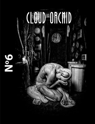 Cloud Orchid January 2014 Issue 06 - US Cover Edition