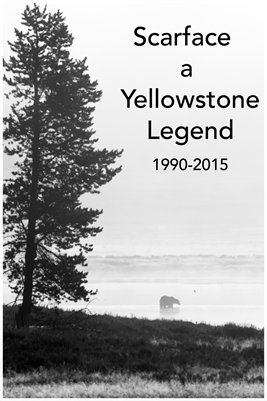 Scarface, a Yellowstone Legend 2017 calendar