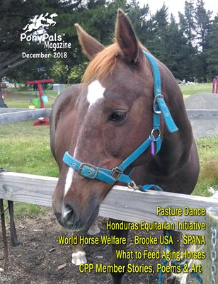 December 2018 Pony Pals Magazine