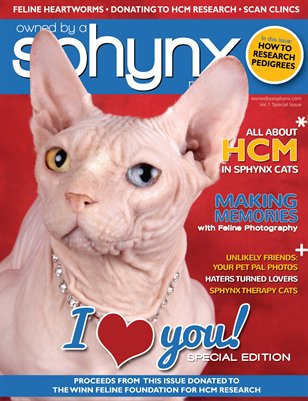 Owned by a Sphynx, Vol. 1 Special Edition