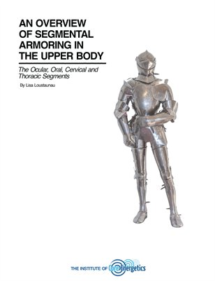 Overview of Segmental Armoring