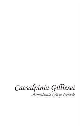 Caesalpinia Gilliesei Chapbook