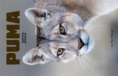 2022 Puma Calendar