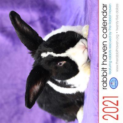 2021 Rabbit Haven Calendar