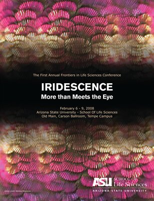 Iridescence: More than Meets the Eye