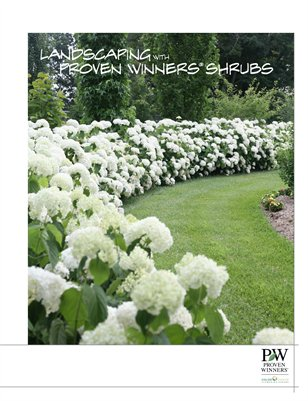 Landscaping with Proven Winners Flowering Shrubs