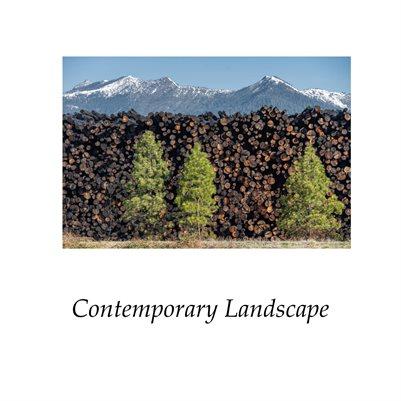 The Contemporary Landscape 2021