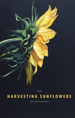 Harvesting Sunflowers