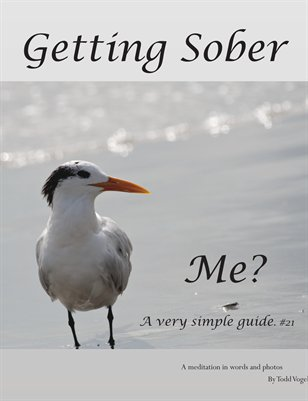 Getting Sober   Me?