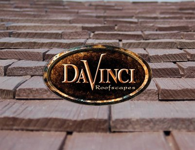 DaVinci Picture Book