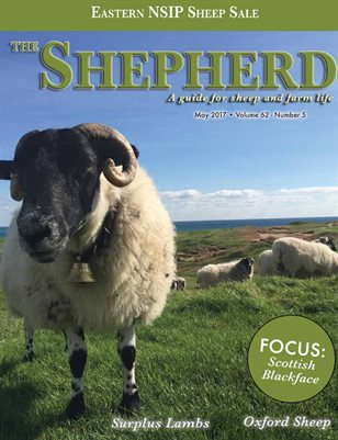The Shepherd May 2017
