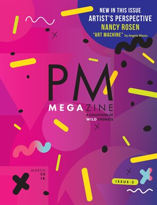 PM MEGAzine Issue 2