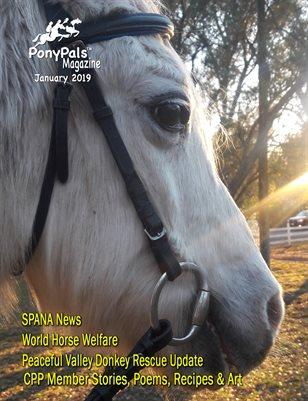 January 2019 Pony Pals Magazine  Vol.8 #8
