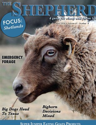 The Shepherd April 2016
