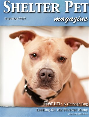 Shelter Pet Magazine- December 2012