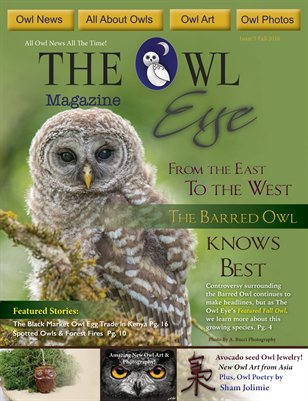 Owl Eye Issue 5 Fall 2016
