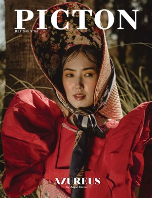 Picton Magazine JULY 2019 N163 Cover 4