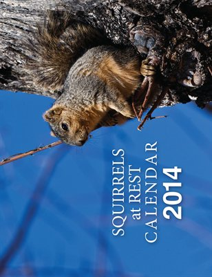Squirrels at Rest Calendar 2014