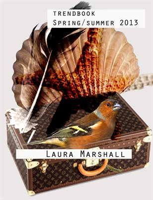 Trendbook 2012