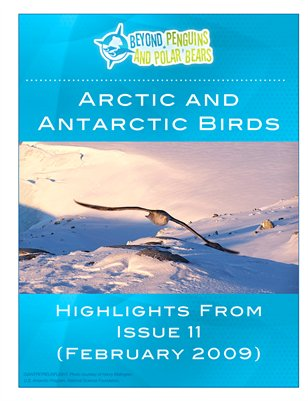Arctic and Antarctic Birds