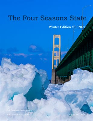 The Four Seasons State - Winter #3