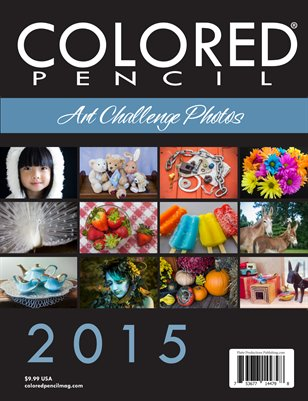 2015 Art Challenge Photos