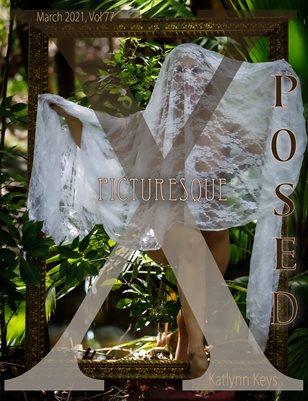 X Posed Vol 77 - Picturesque