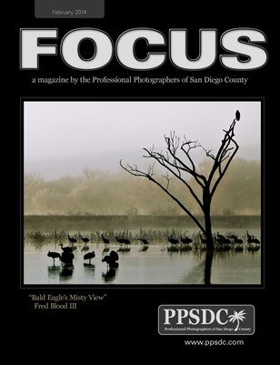FOCUS Feb 2014