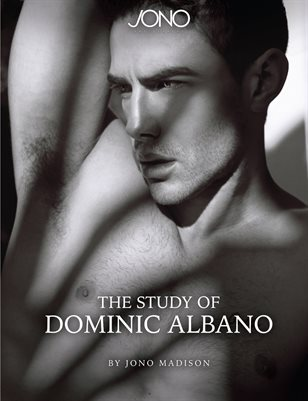 The Study of Dominic Albano