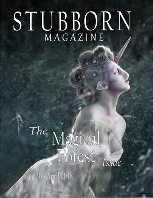 The Magical Forest Issue