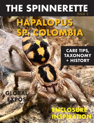 The Spinnerette, Issue 5: Halapolus sp. Colombia