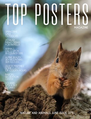 TOP POSTERS MAGAZINE- NATURE AND ANIMALS JUNE (Vol 375)
