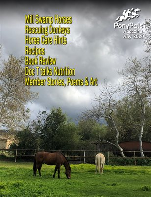May 2020 Pony Pals Magazine - Vol.9#12
