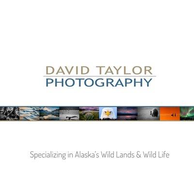 2013 David Taylor Print Catalog